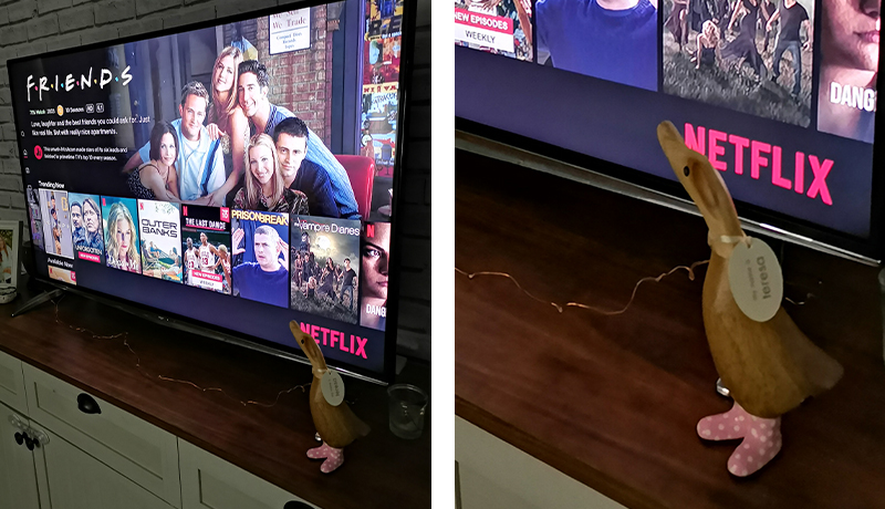 wooden-duck-pink-wellies-netflix
