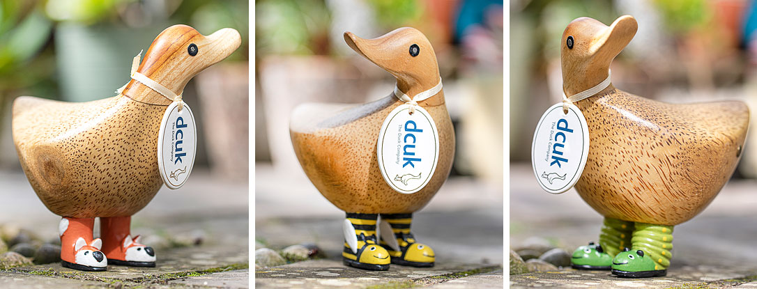 Wild Welly Boot Duckies