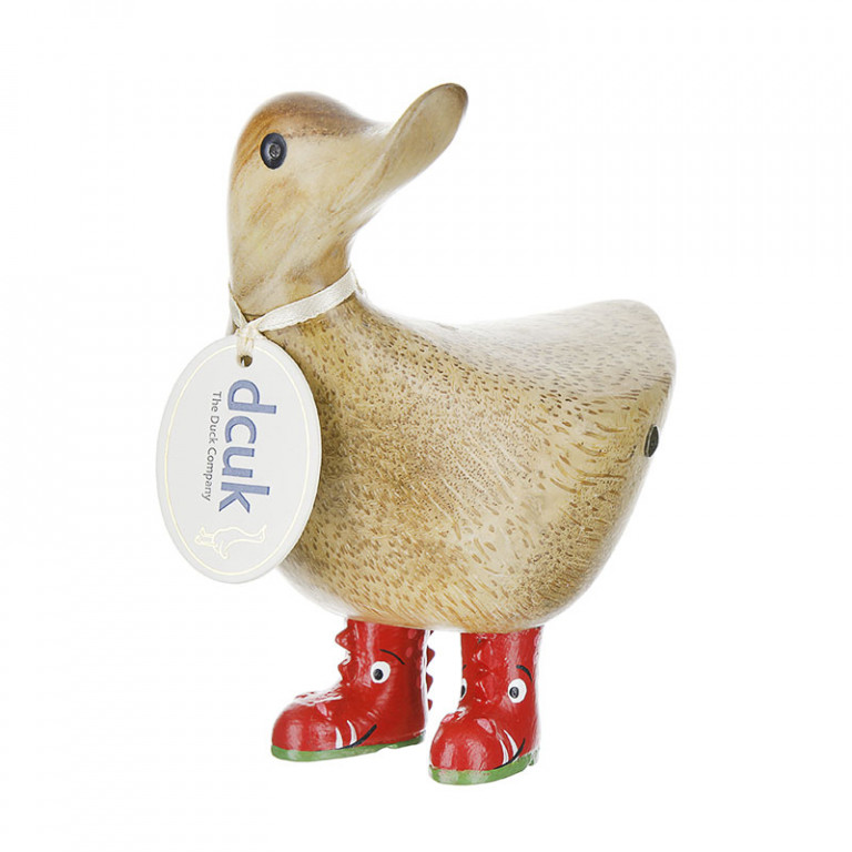Wild Welly Ducky – Dinosaur