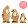Natural Emperor Penguin - Family