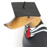 Graduation Duckling with Moulded White Ribbons