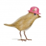 Flower Garden Bird with a Fuschia Pink Hat